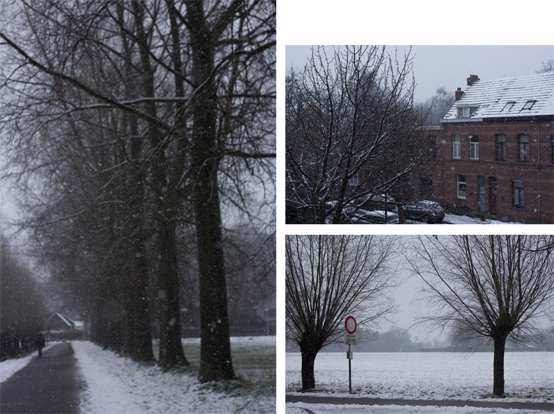 "rougeimaginaire: ""Snow!"""
