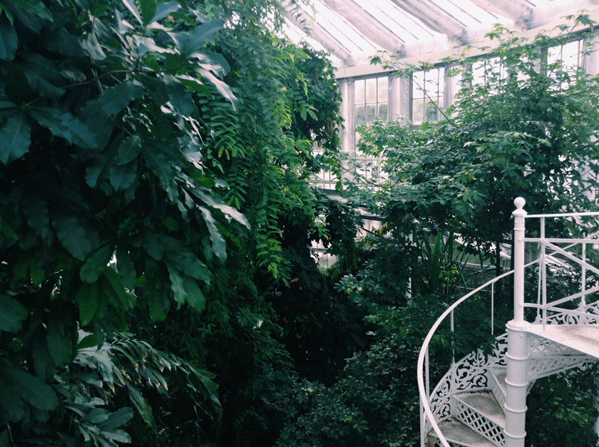 Mini Copenhagen Guide: Botanisk Have | rougeimaginaire.com